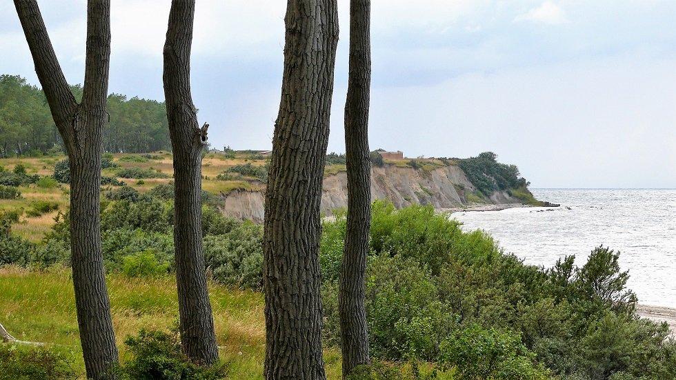 Steilküste der Halbinsel Wustrow